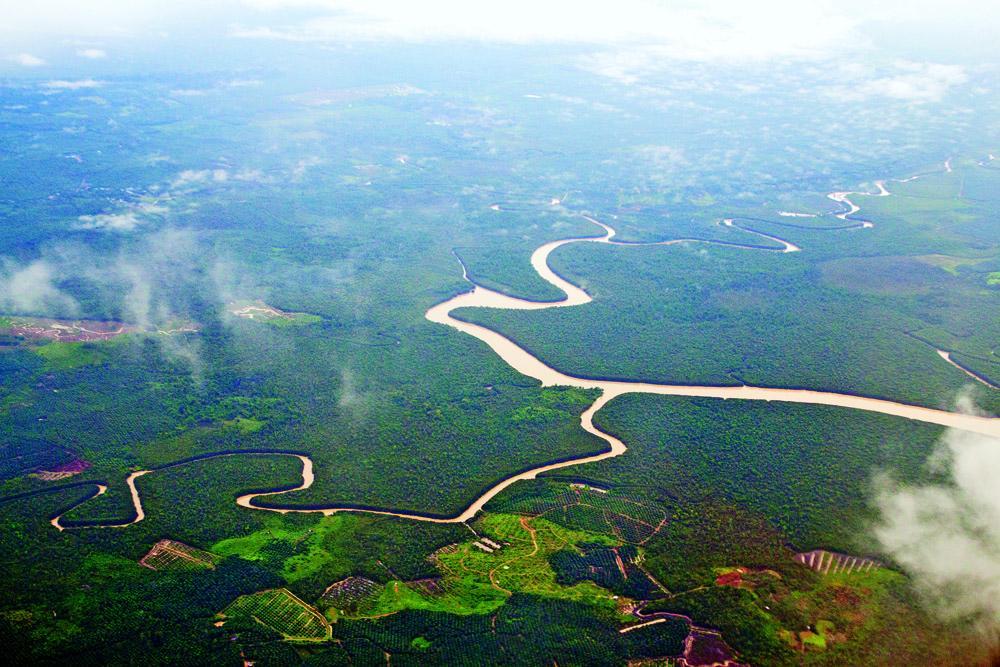 从空中俯瞰,蜿蜒的河流镶嵌在密林之间,显露出原始野性的气息.
