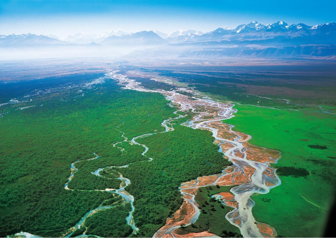 西藏地图林芝江河图